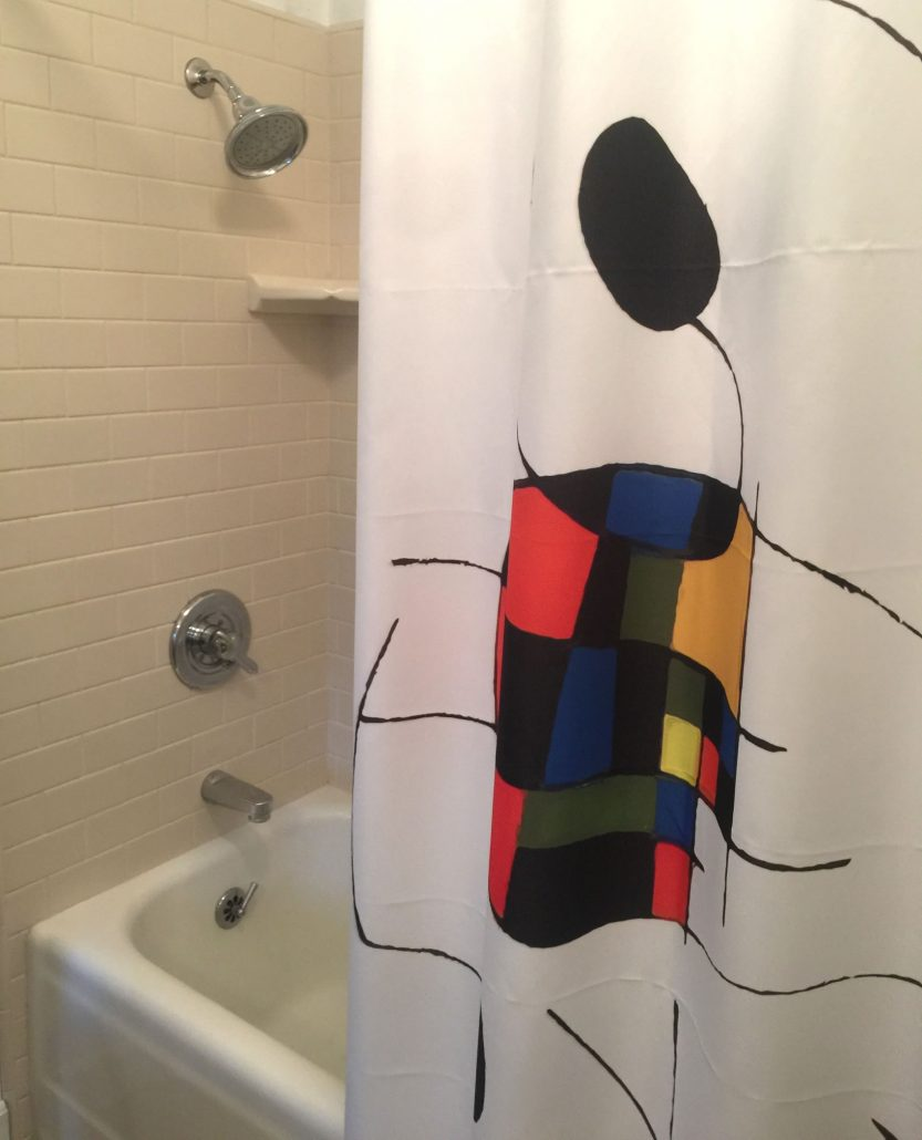 Shower with Miro - Ashland AirBnB