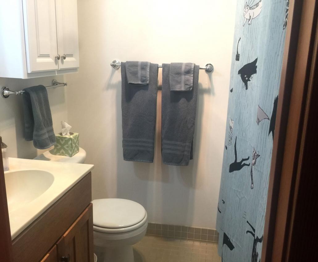 Gorey Bathroom